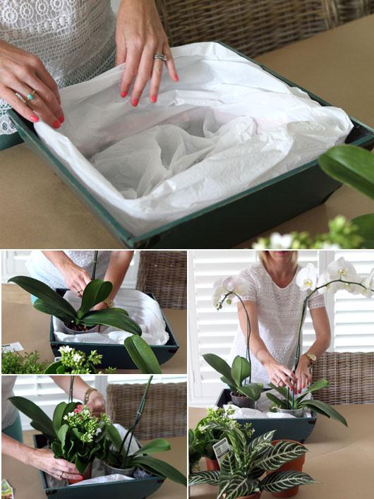 woman assembly a DIY orchid arrangement