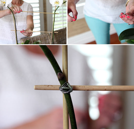 creating a cross trellis for an orchid with bamboo and florist wire