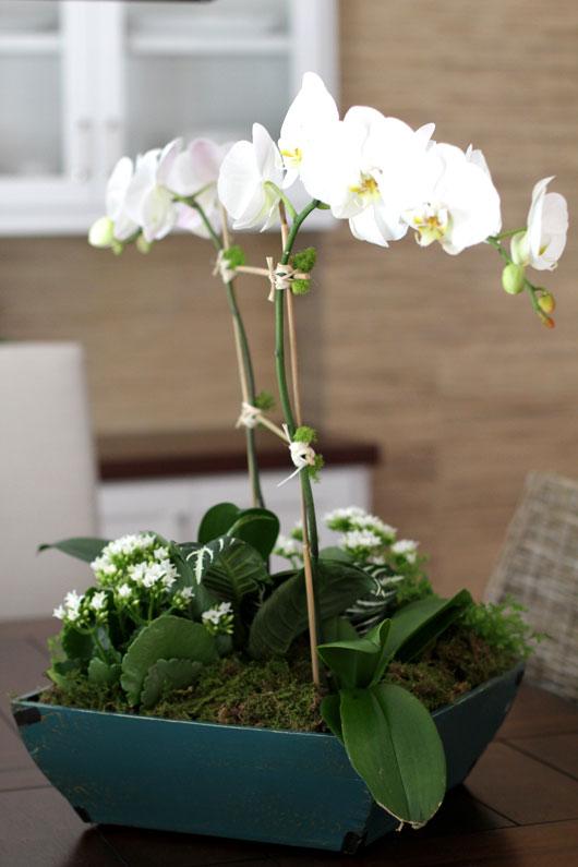 Howe we live diy orchid centerpiece