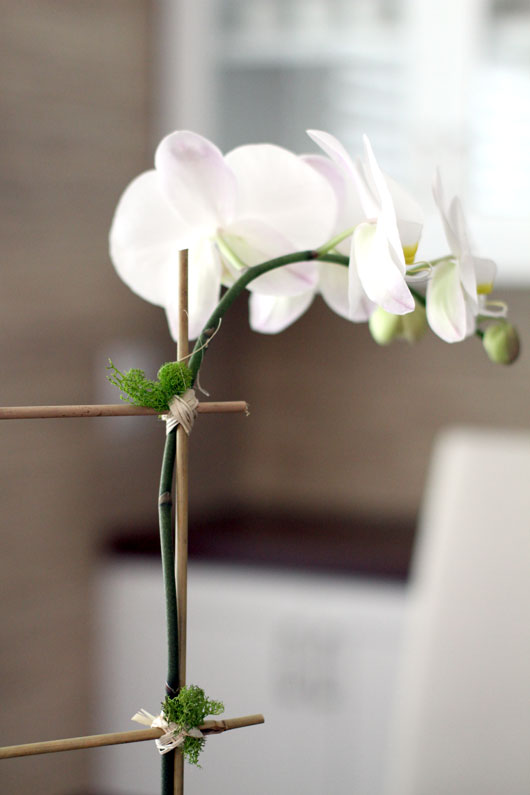 close up of white orchid tied to a bamboo stick with raffia and moss