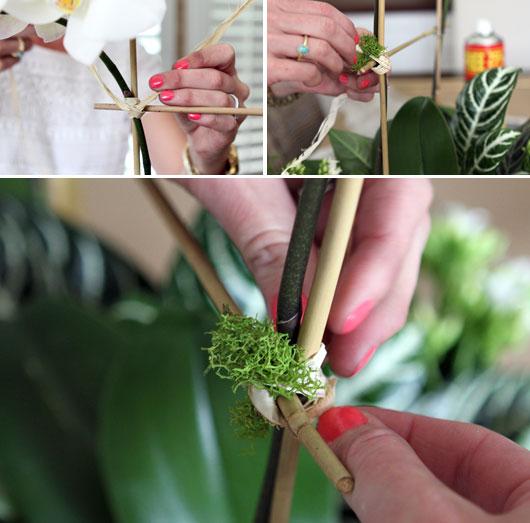 tying-reindeer-moss to bamboo