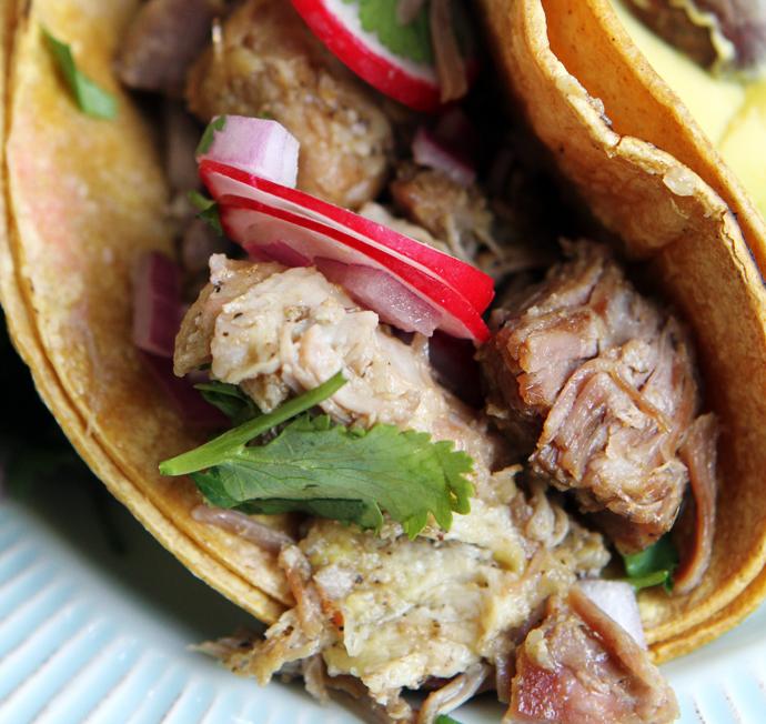 braised carnitas taco