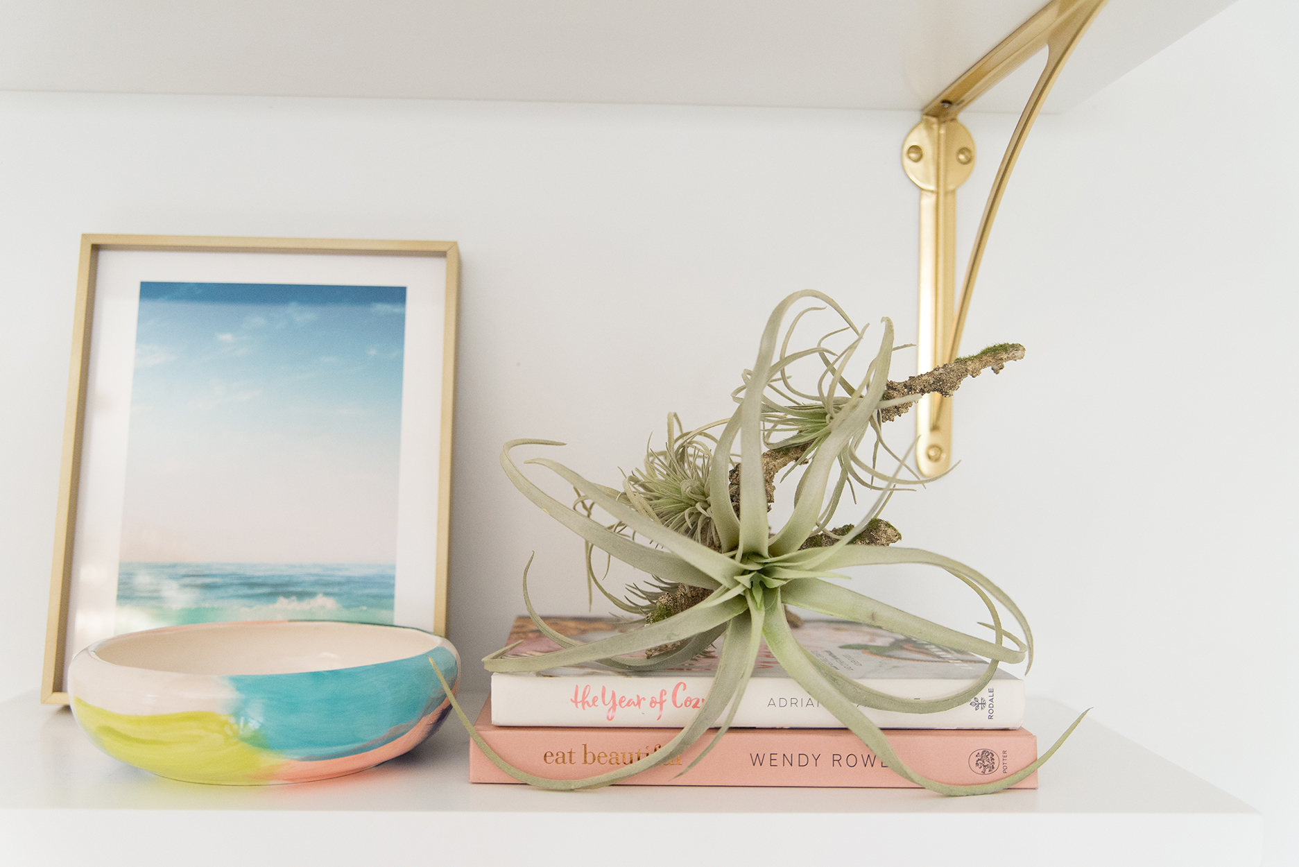 a white shelf with an ocean print in a gold frame, two books with an air cactus sitting on the top