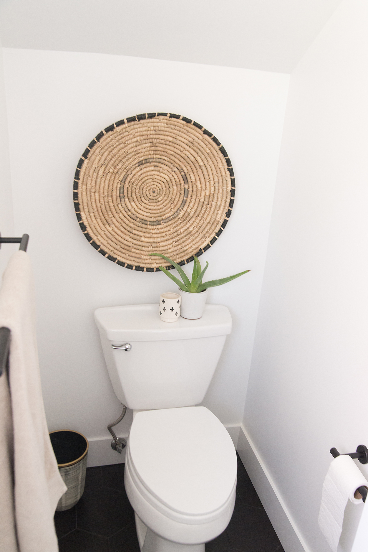 toilet with an aloe plant and wall art