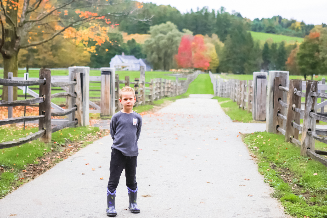 Young boy standing on a paved path at Billings Dairy Farm in Woodstock Vermont