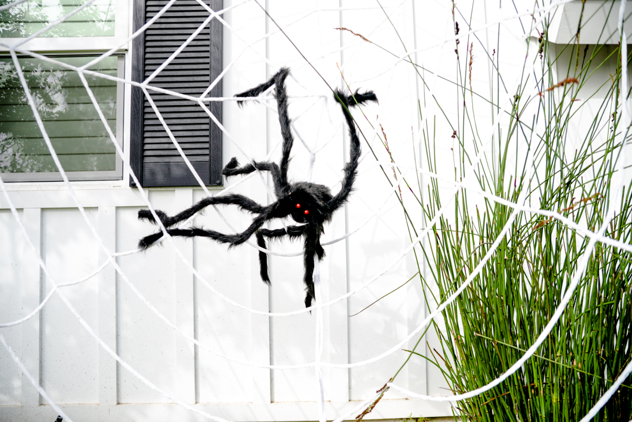Oversized black fake fuzzy spider on a giant white web in front of a white farmhouse with black shutters