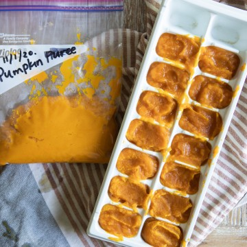 instant pot pumpkin puree spooned into ice cube trays and in freezer bag