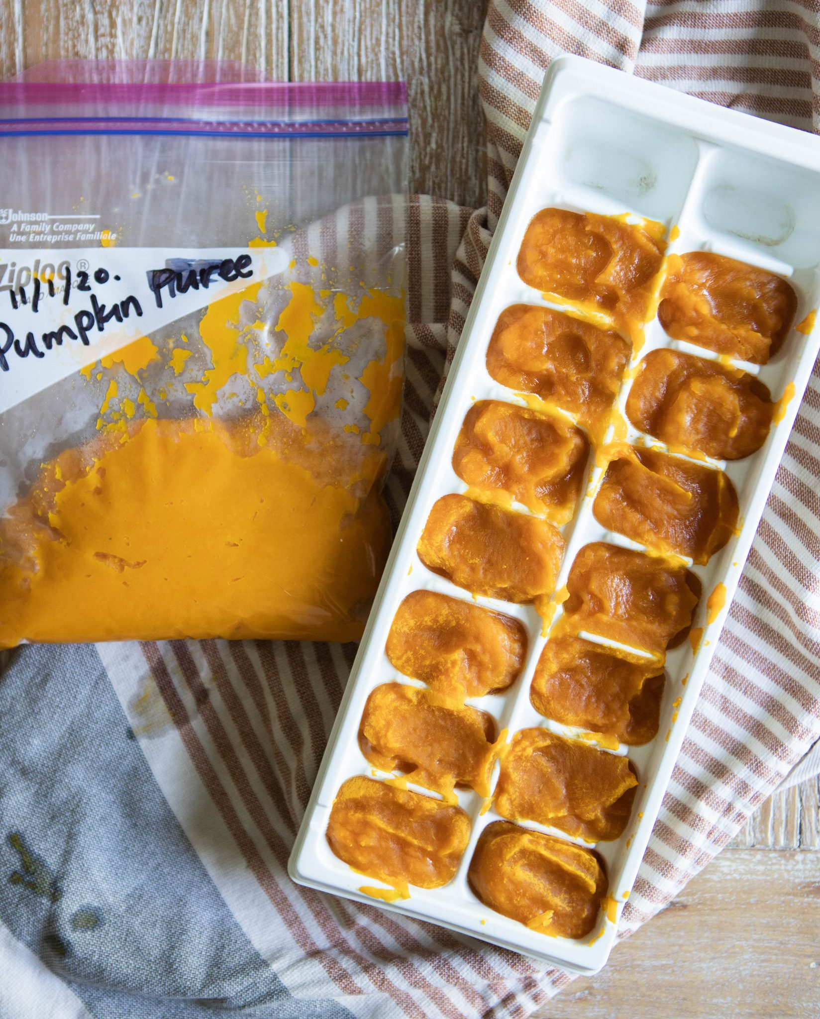 pumpkin puree spooned into ice cube trays and in freezer bag