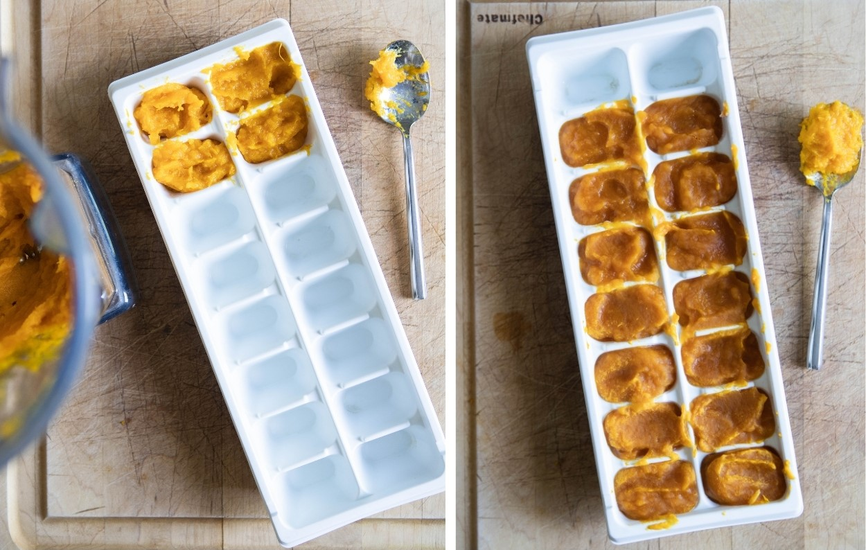 pumpkin puree in white ice cube trays
